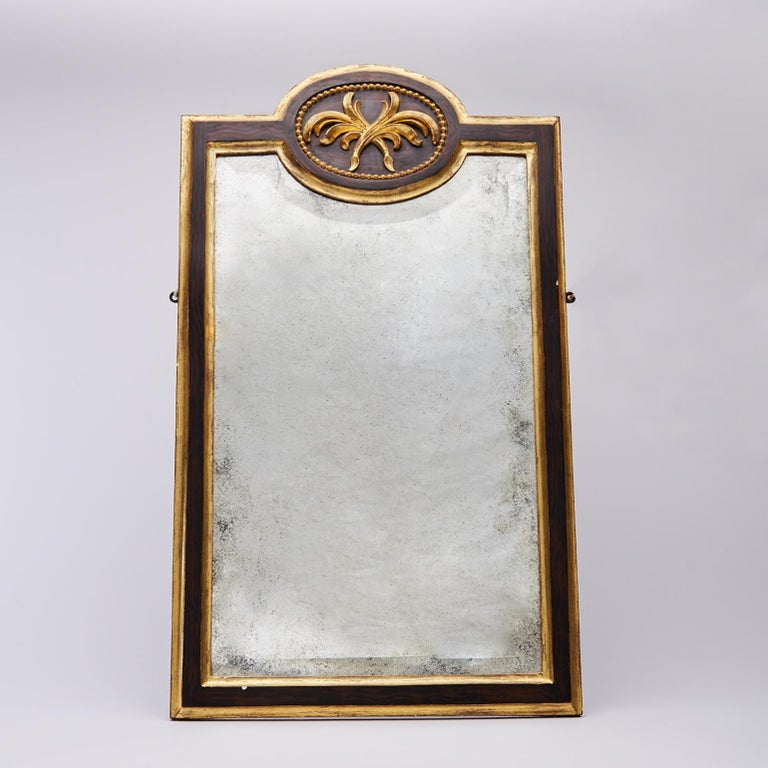 Wool Pair of 19th Century Gilt and Ebonized Mirrors For Sale