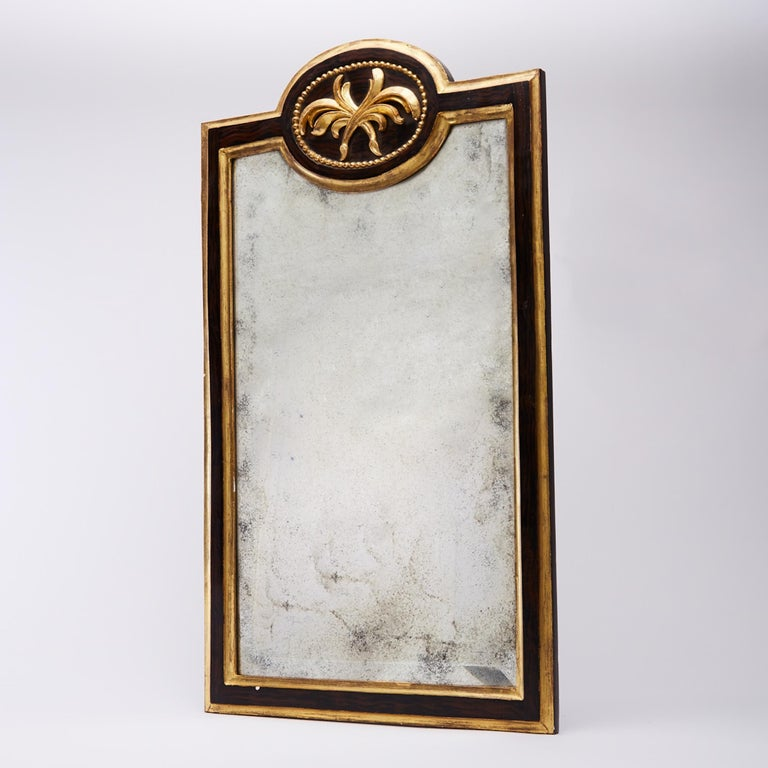 Pair of 19th Century Gilt and Ebonized Mirrors For Sale 1