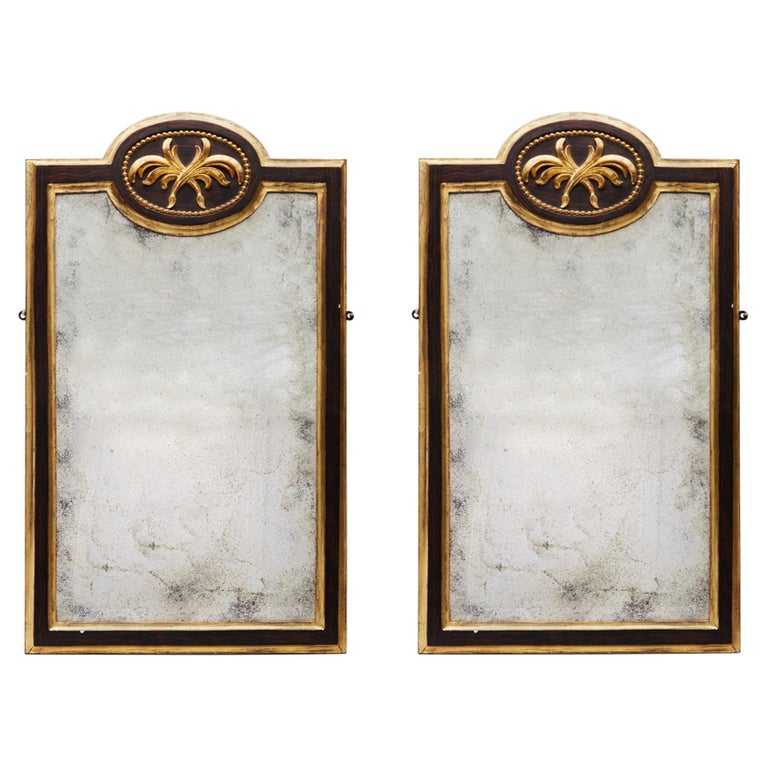 Pair of 19th Century Gilt and Ebonized Mirrors For Sale