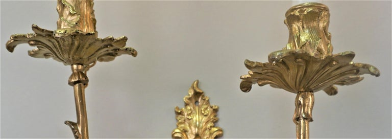 Pair of 19th Century Gilt Bronze Wall Sconces In Good Condition For Sale In Fairfax, VA