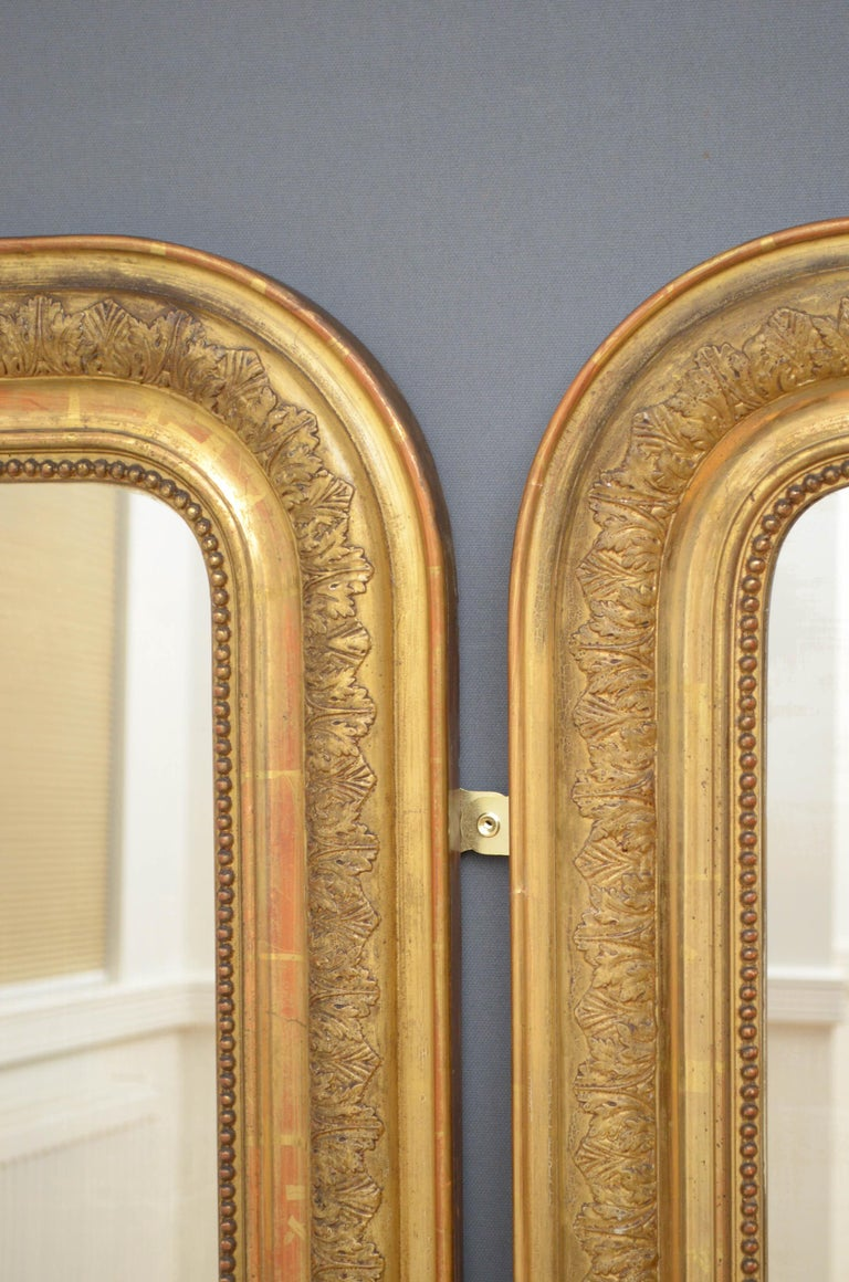 Pair of 19th Century Giltwood Mirrors In Good Condition In Whaley Bridge, GB