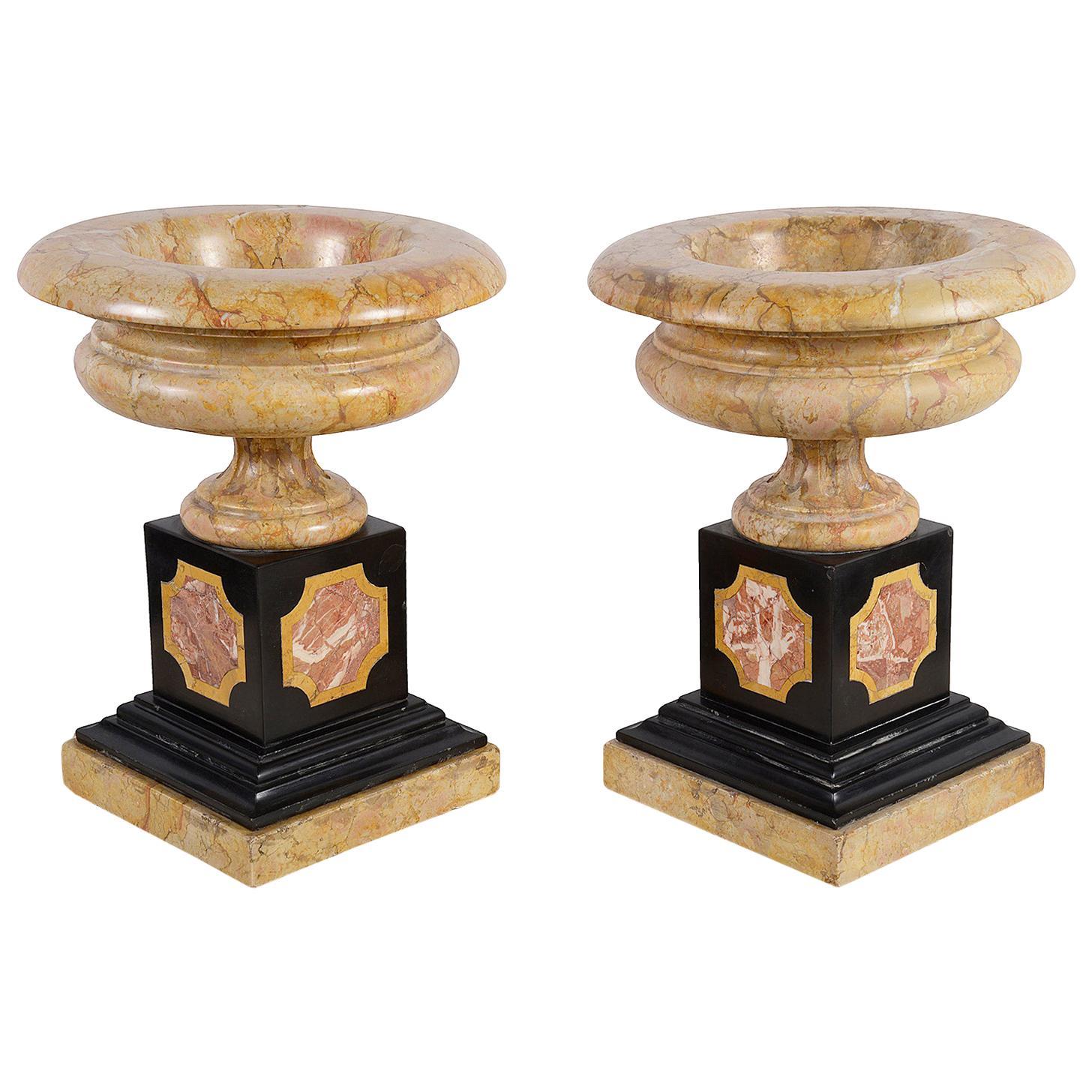 Pair of 19th Century Grand Tour Sienna Marble Tazzas