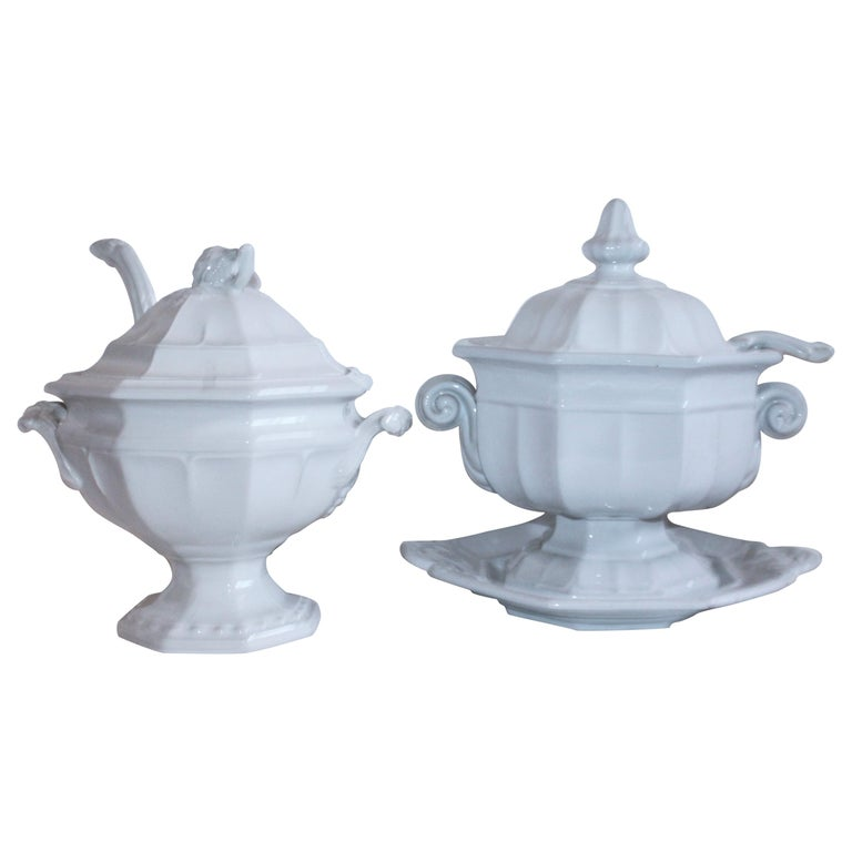 Pair of 19th Century Ironstone Tureens For Sale