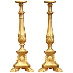Pair of 19th Century Italian Carved Giltwood Cathedral Candlesticks