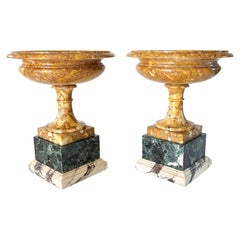 Pair of 19th Century Italian Neoclassical Tazze in Polychrome Marbles