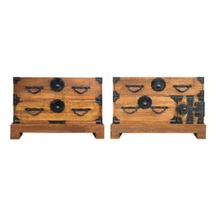 Pair of 19th Century Japanese Tansu Chests on Stands