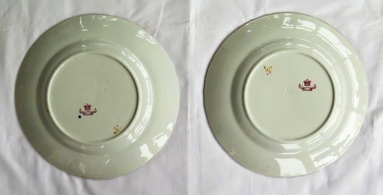 Pair of 19th Century Mason's Ashworth's Ironstone Dinner Plates, Circa 1870  For Sale 10