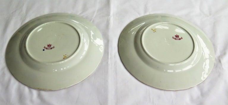 Pair of 19th Century Mason's Ashworth's Ironstone Dinner Plates, Circa 1870  For Sale 11