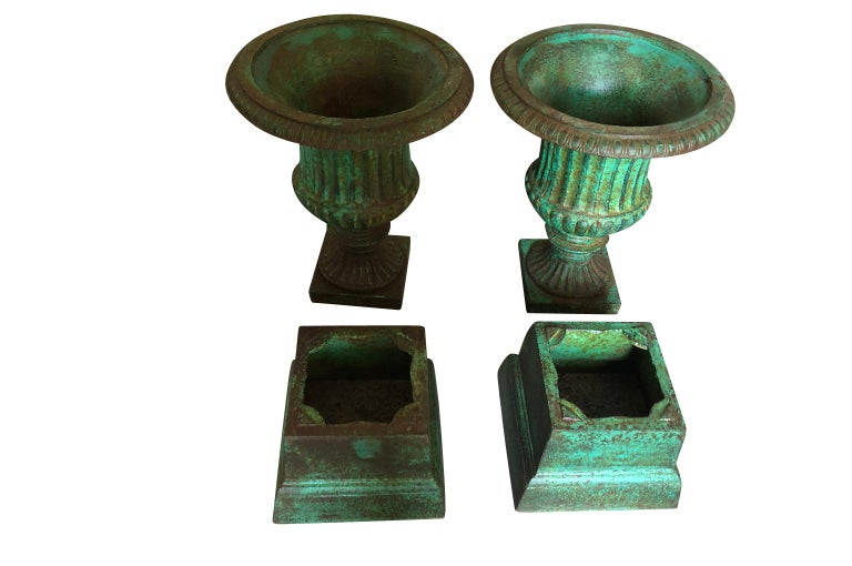 Spanish Pair of 19th Century Medici Style Urns For Sale