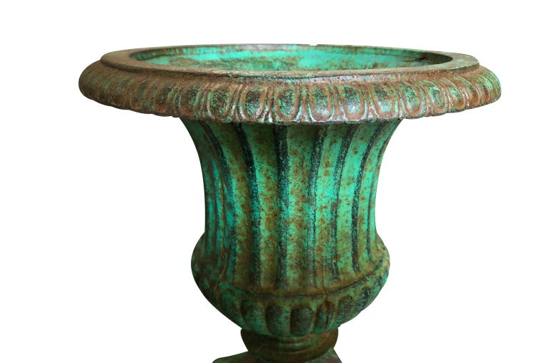 Iron Pair of 19th Century Medici Style Urns For Sale
