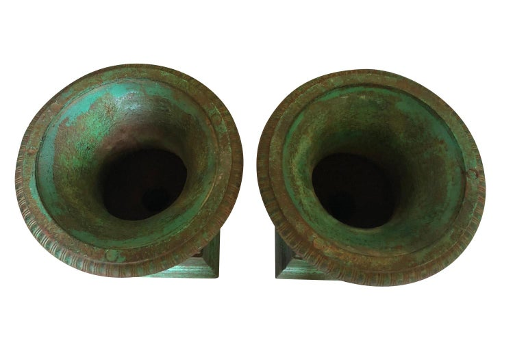 Pair of 19th Century Medici Style Urns For Sale 1