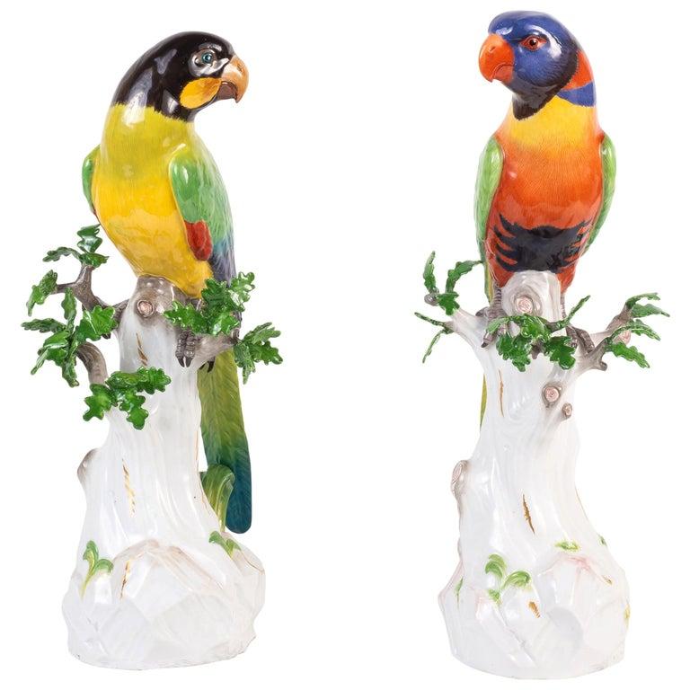 Pair of 19th Century Meissen Porcelain Parrots For Sale