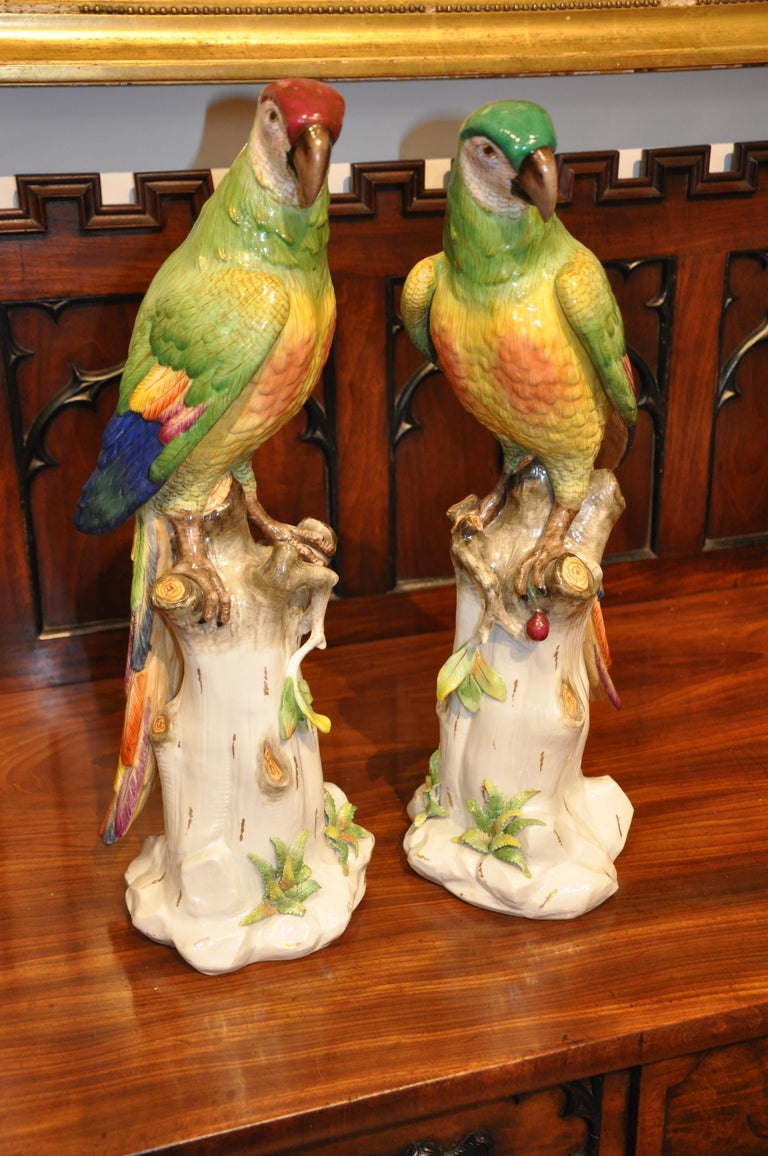 Pair of 19th Century Meissen Style Porcelain Parrots In Good Condition For Sale In Essex, MA