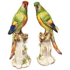 Pair of 19th Century Meissen Style Porcelain Parrots