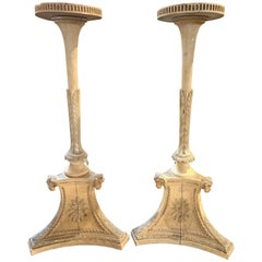 Pair of 19th Century of French Neoclassical Carved and Painted Plant Stands