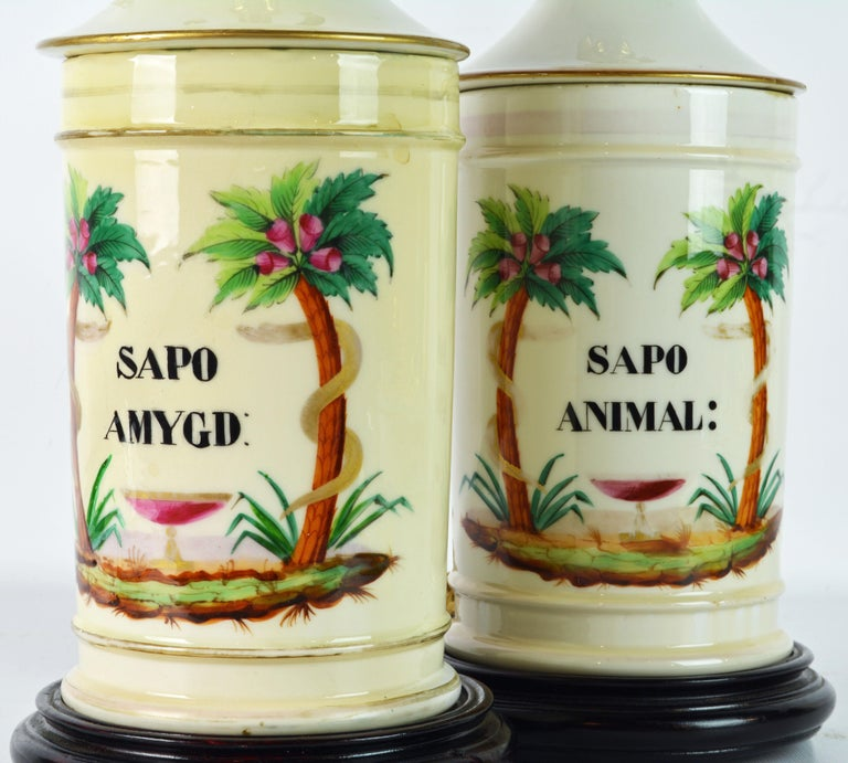 Pair of 19th Century Old Paris Tropical Themed Apothecary Jars Table Lamps In Good Condition For Sale In Ft. Lauderdale, FL