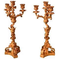 Pair of 19th Century Ormolu 4-Light Cherub Candelabra