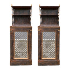 Pair of 19th Century Regency Faux Bois Chiffoniers, Mirrored Door, circa 1825