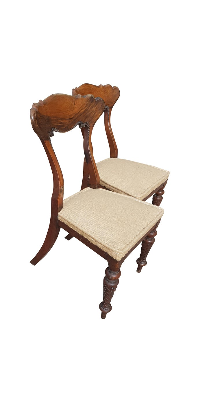 Pair of 19th Century Scottish Walnut Chairs For Sale 5