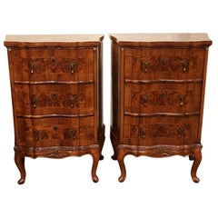 Pair of 19th Century Walnut Dutch Bedside Storage Cabinets, circa 1880