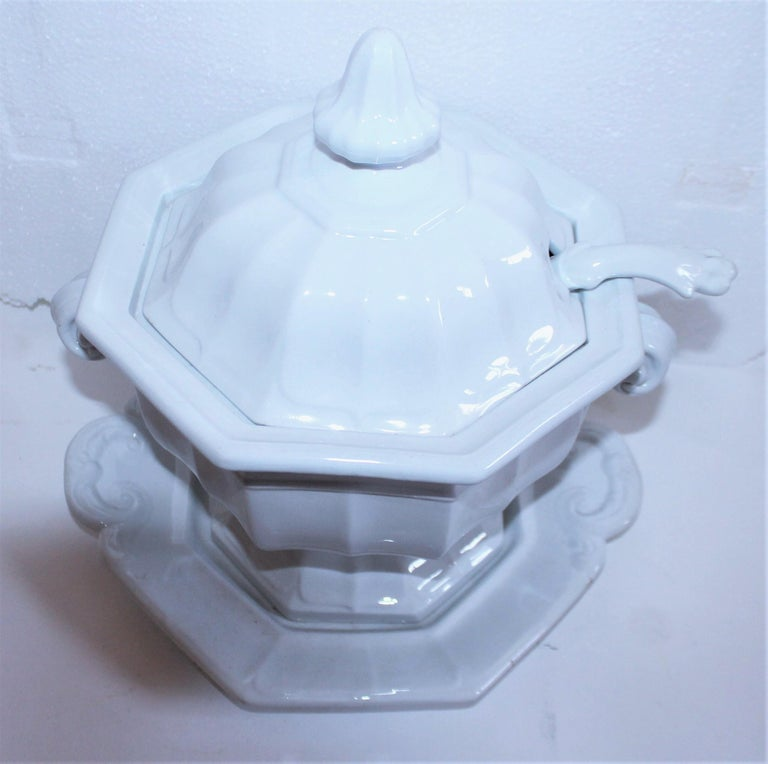 Pair of 19th Century Ironstone Tureens For Sale 1