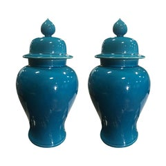 Pair of 20th Century Chinese Blue Porcelain Lidded Jars
