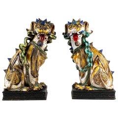 Pair of 20th Century Italian Terracotta Fu Dogs