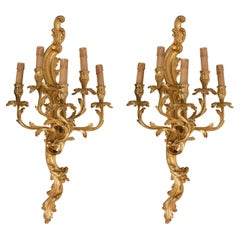 Pair of 20th Century Louis XV Style Gilded Bronze Ormolu French Wall Lights