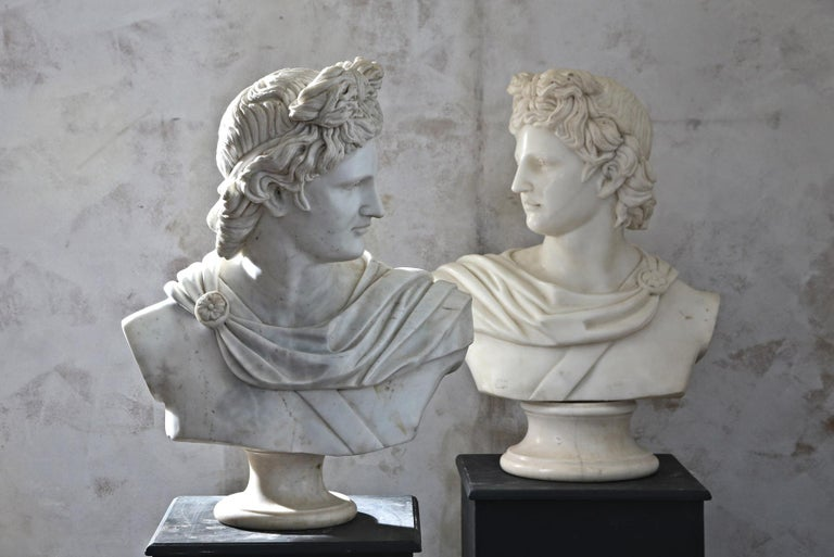 Pair of 20th Century Apollo Belvedere Busts In Good Condition For Sale In Poling, West Sussex