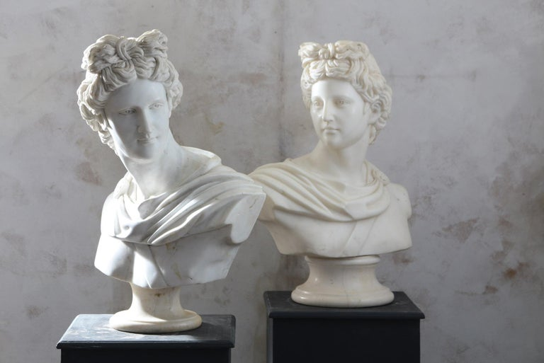Pair of 20th Century Apollo Belvedere Busts For Sale 1