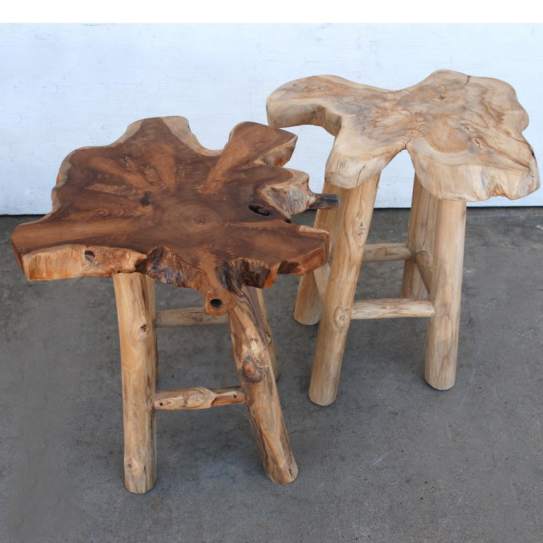 Organic Modern Pair of Rustic Live Edge Stools For Sale