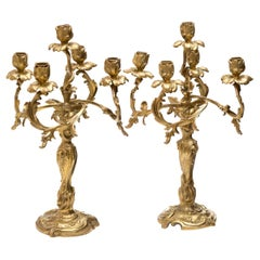 Pair of 4-Light Ormolu Louis XV Candelabra, French, 19th Century