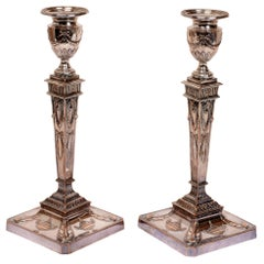 Pair of Adam Style Neoclassical Candlesticks, 19th Century