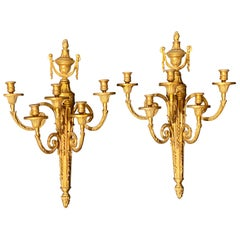 Pair of Adams Style Five Arm Tassel Decorated Dore Bronze Wall Candelabras