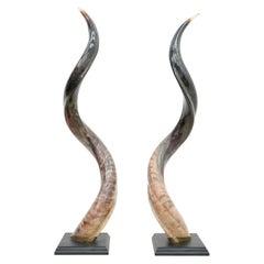 Pair of African Kudo Horn Sculpures