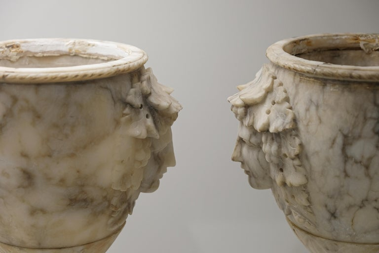 19th Century Pair of Alabaster Goblets with Dionysus Heads