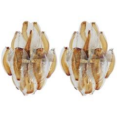Pair of Amber Shells Sconces by La Murrina