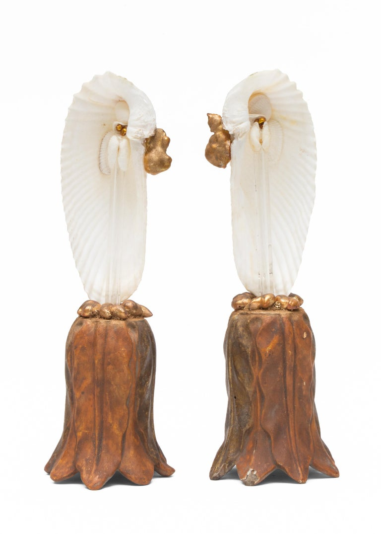 18th Century and Earlier Pair of Angel Wing Shells on 18th Century Gold Leaf Bases with Baroque Pearls For Sale