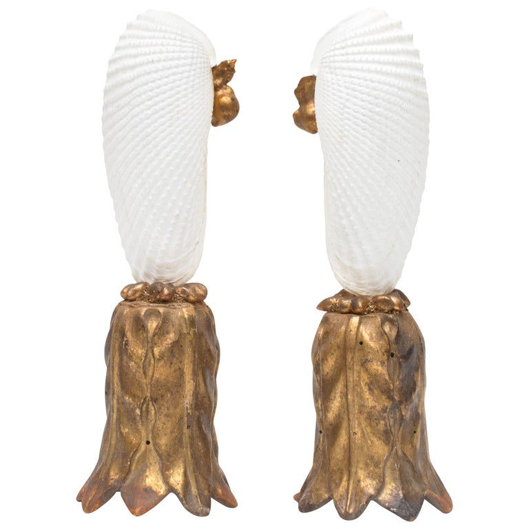 Pair of Angel Wing Shells on 18th Century Gold Leaf Bases with Baroque Pearls For Sale