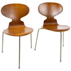 Pair of Ant, Model 3101, in Teak, Designed by Arne Jacobsen