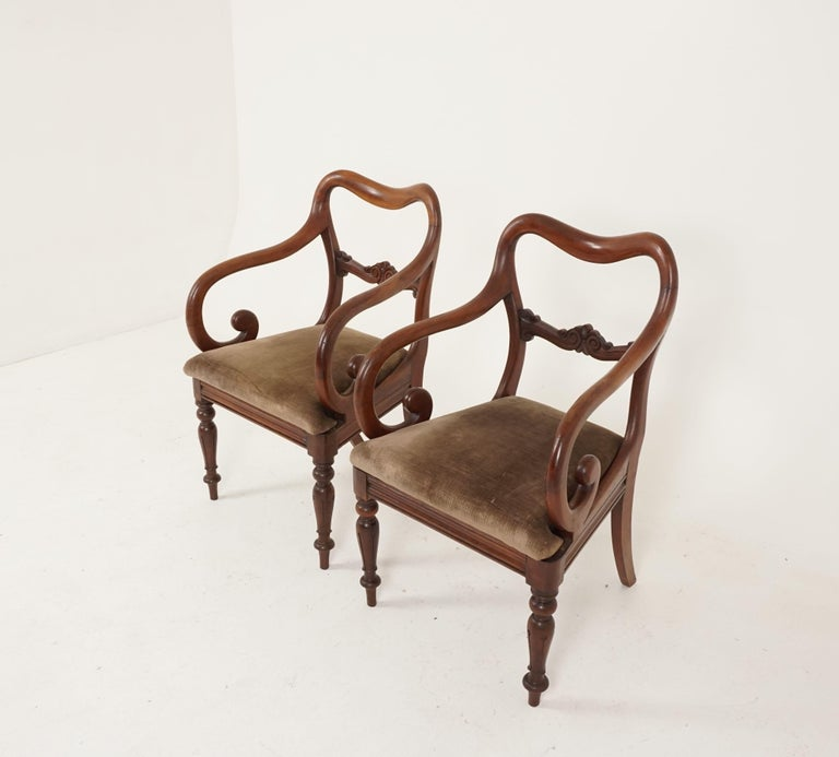 Pair of antique armchairs, Victorian mahogany dining armchairs, library chairs, Scotland, 1840, B2473  Scotland 1840 Solid mahogany Original finish Kidney shaped back Lovely carved splat Nicely shaped scroll arm Lift out seat with