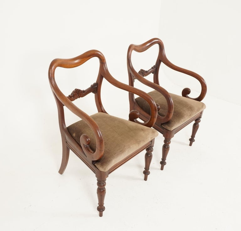 Scottish Pair of Antique Armchairs, Victorian Mahogany Dining Armchairs, Library Chairs For Sale