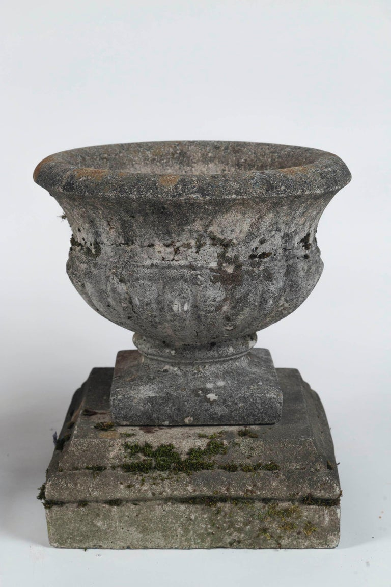 Pair of Antique Cast Stone Garden Urns on Bases, circa 1920 For Sale 2