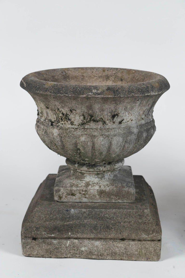 Pair of Antique Cast Stone Garden Urns on Bases, circa 1920 For Sale 4