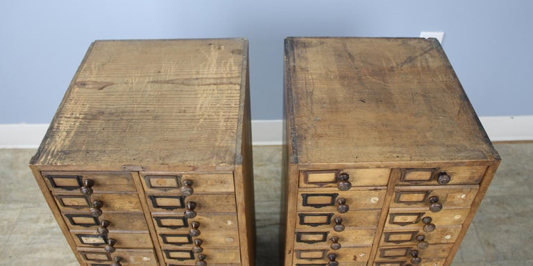 20th Century Pair of Antique Collector's Drawers in Pine For Sale