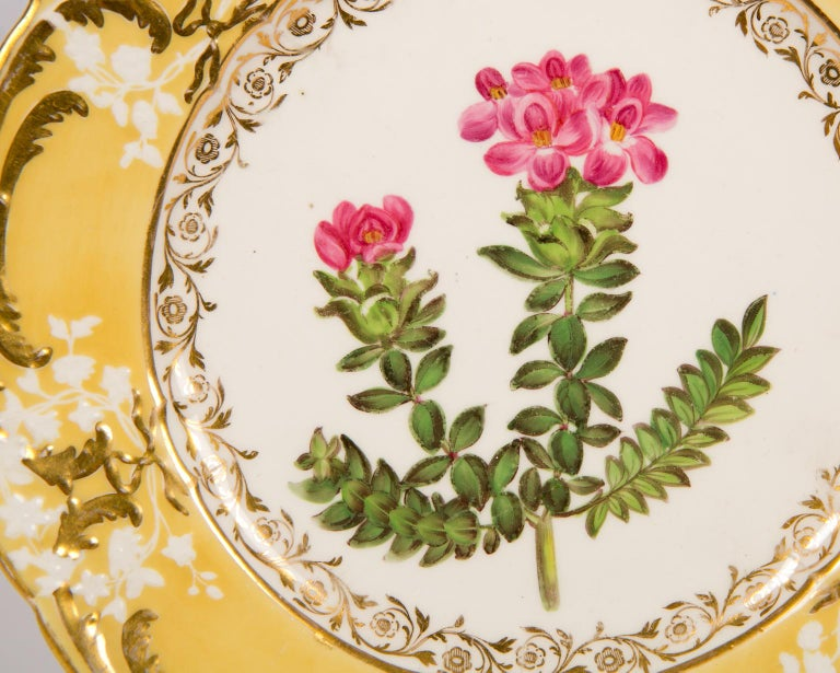 Pair of Antique Dishes with Single Hand-Painted Flower circa 1825 For Sale 5