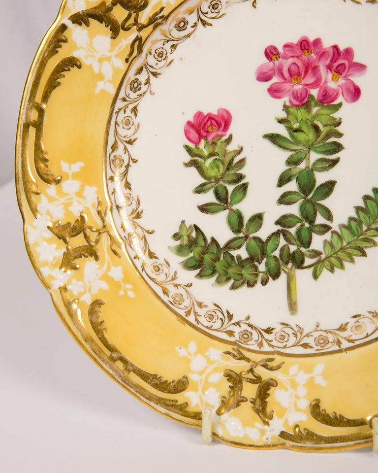 Pair of Antique Dishes with Single Hand-Painted Flower circa 1825 For Sale 6