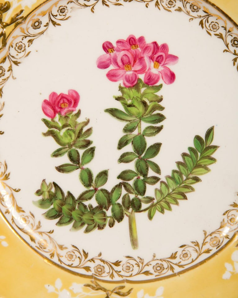 Pair of Antique Dishes with Single Hand-Painted Flower circa 1825 For Sale 7