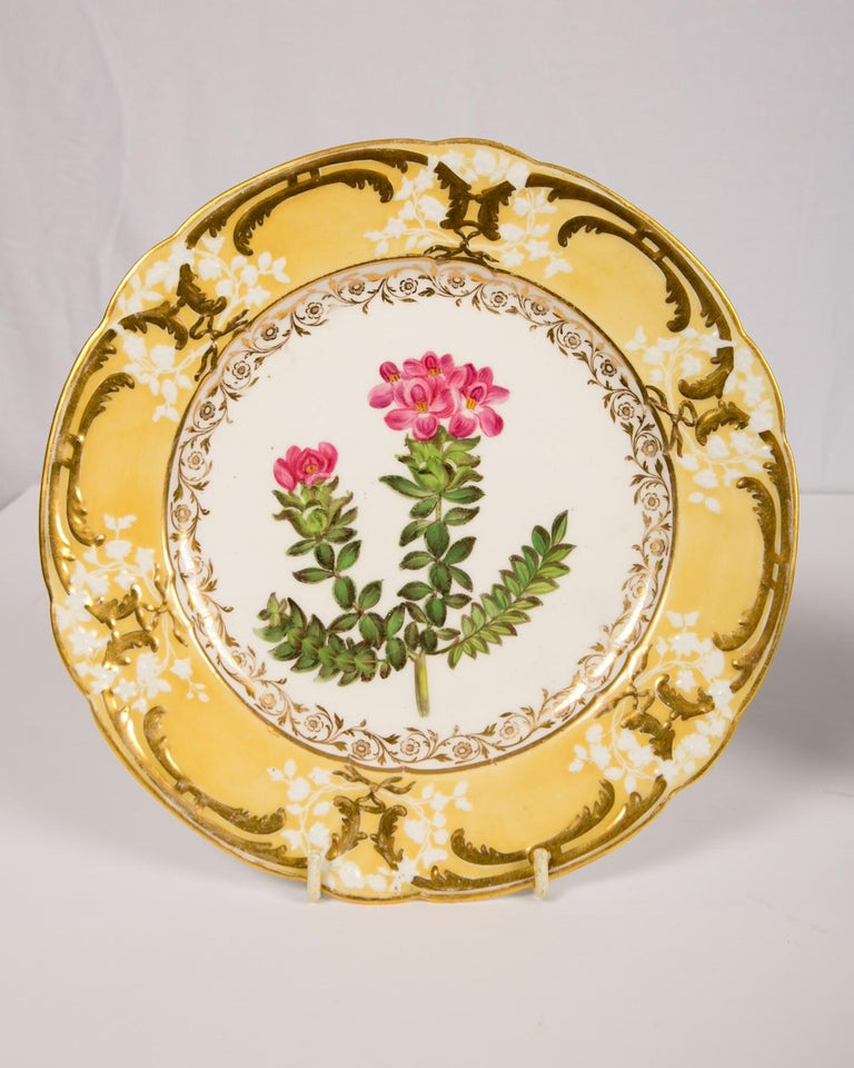 Pair of Antique Dishes with Single Hand-Painted Flower circa 1825 For Sale 8
