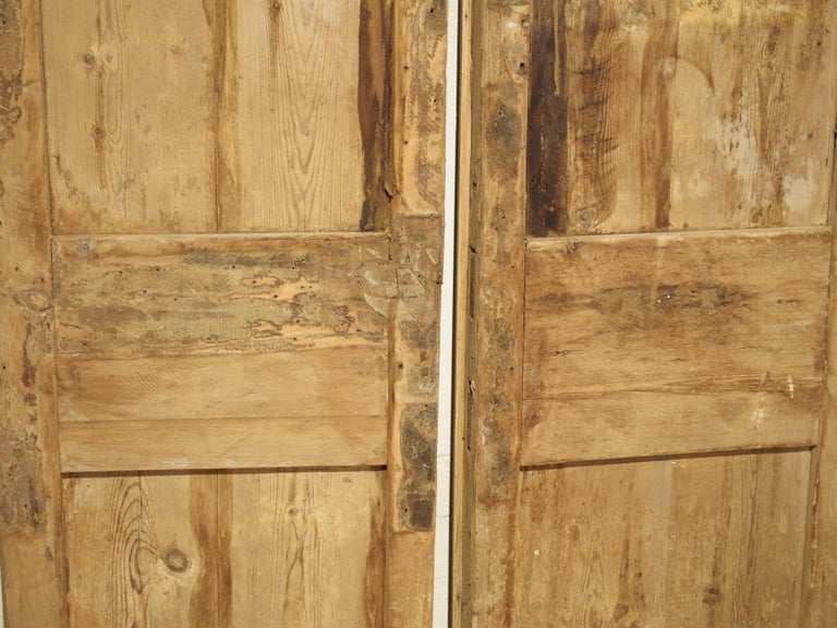 Pair of Antique French Egyptian Pine Doors with Carved Bird Motifs For Sale 11